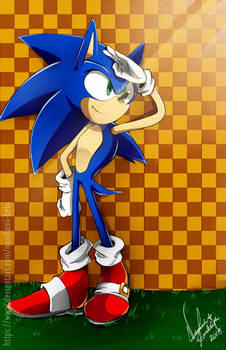 +SONIC THE HEDGEHOG+