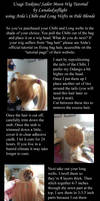 Usagi Wig Tutorial by Lunaladyoflight