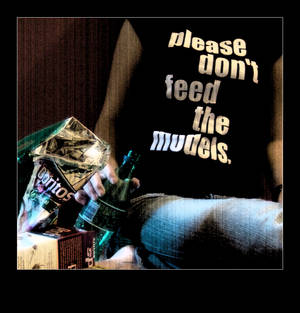 .Please.Dont.Feed.The.Models.