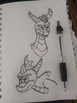 Spyro the Dragon-Traditional