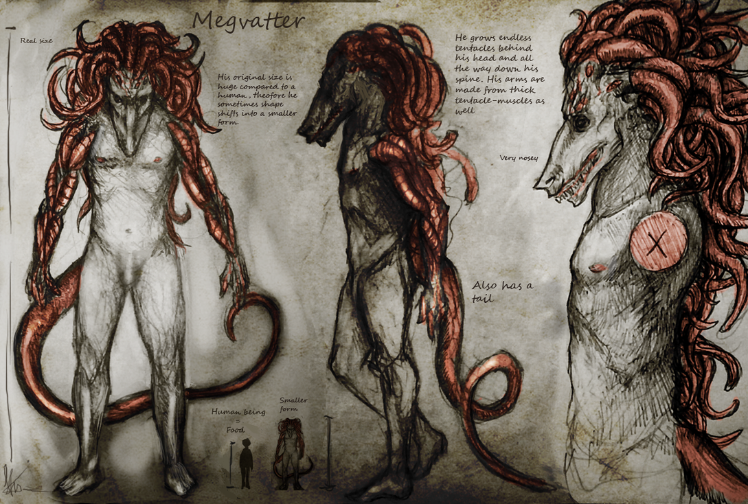 Megvatter by Snook-8