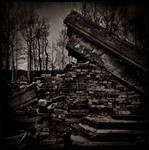 Dead architecture III by daaram