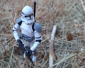 Gray 41st Trooper Scouting