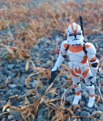 212th Trooper Scouting
