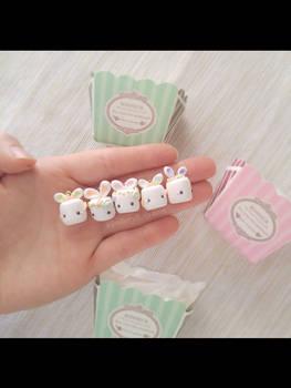 Bon-Bunny Collection