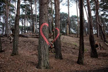Ihearttheforest by antonthegreat