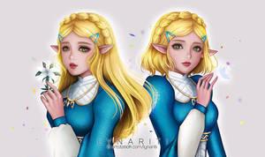 Zelda - Breath of the Wind by Lynariti