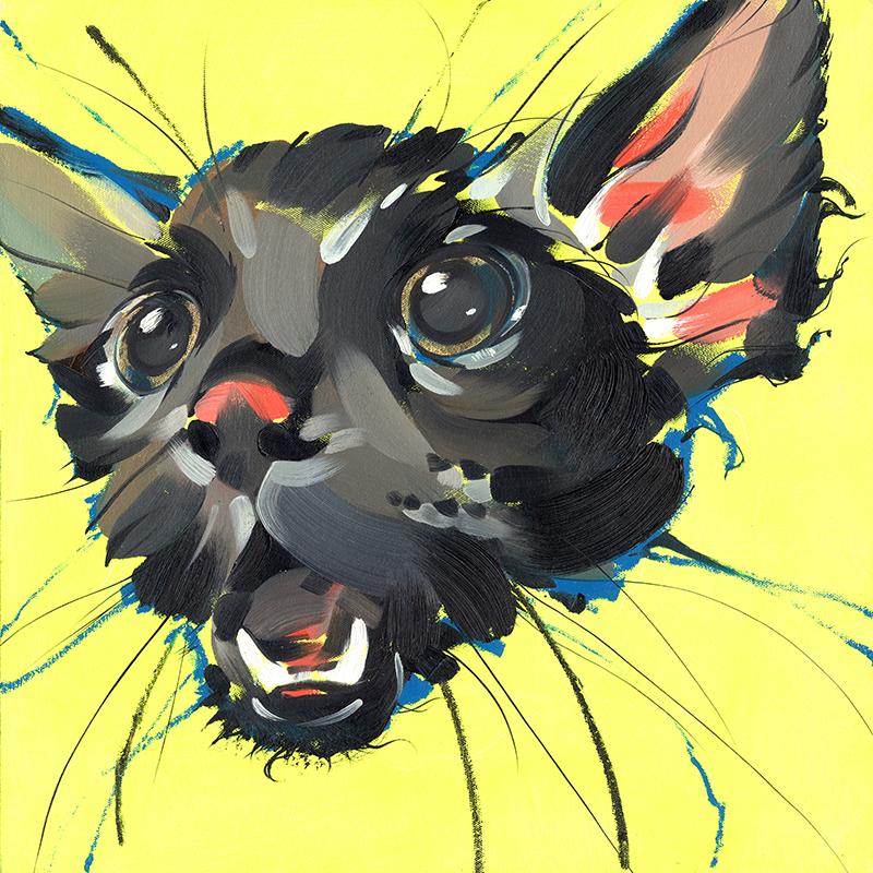 Wet Pussy by likeOMFGitsJONNY