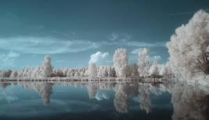 IR landscape 1 by Kopczynski-Adam