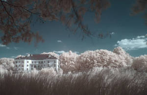 IR landscape 2 by Kopczynski-Adam