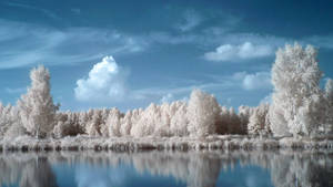 Blue landscape by Kopczynski-Adam