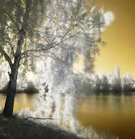 Golden waters by Kopczynski-Adam