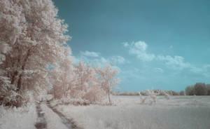 Village road by Kopczynski-Adam