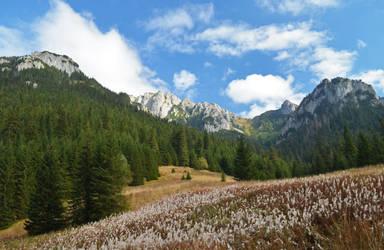 Dolina Koscieliska