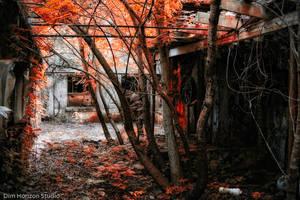 Abandoned Prison - I