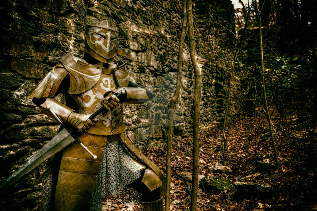 Darkmoon Knightess Kindles Old Ruins - I by DimHorizonStudio