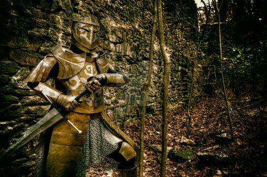 Darkmoon Knightess Kindles Old Ruins - I