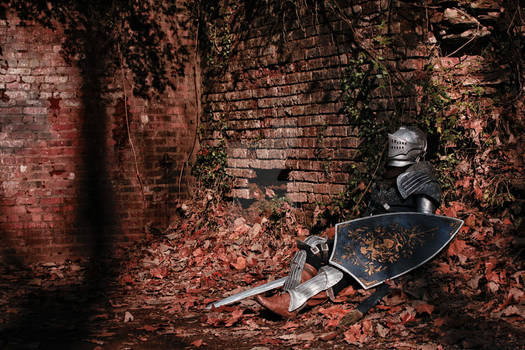 Elite Knight - II