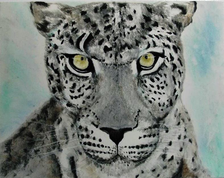 Uncia uncia (Snow Leopard) by musicx09