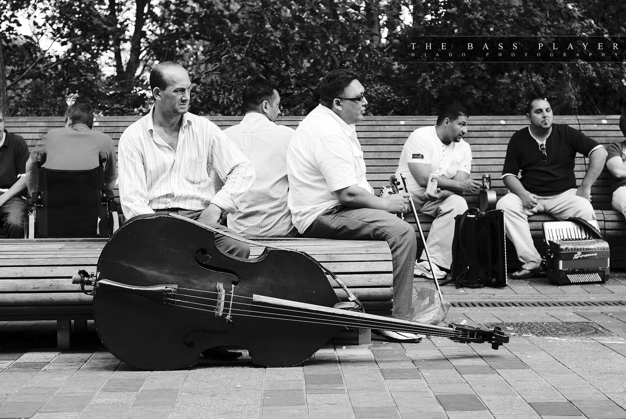 The Bass Player by diado