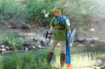 Hyrule Warriors - Link Cosplay II