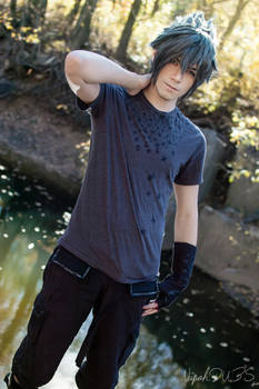 The Crowned Prince - FFXV