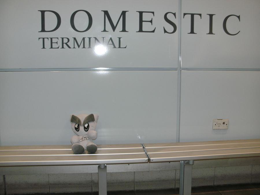 Fella Domestic Terminal by gymjunkie99