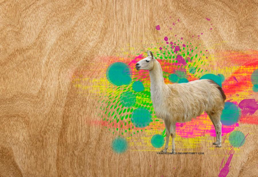 Pretty Little Llama by tragicdisco