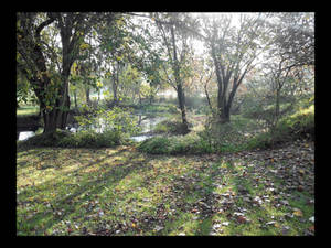 Autumn in the local park - ReEdited