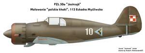 PZL.50 Jastrzab: khaki
