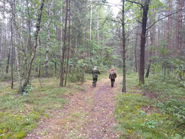 MSK camouflage field tests with DPM