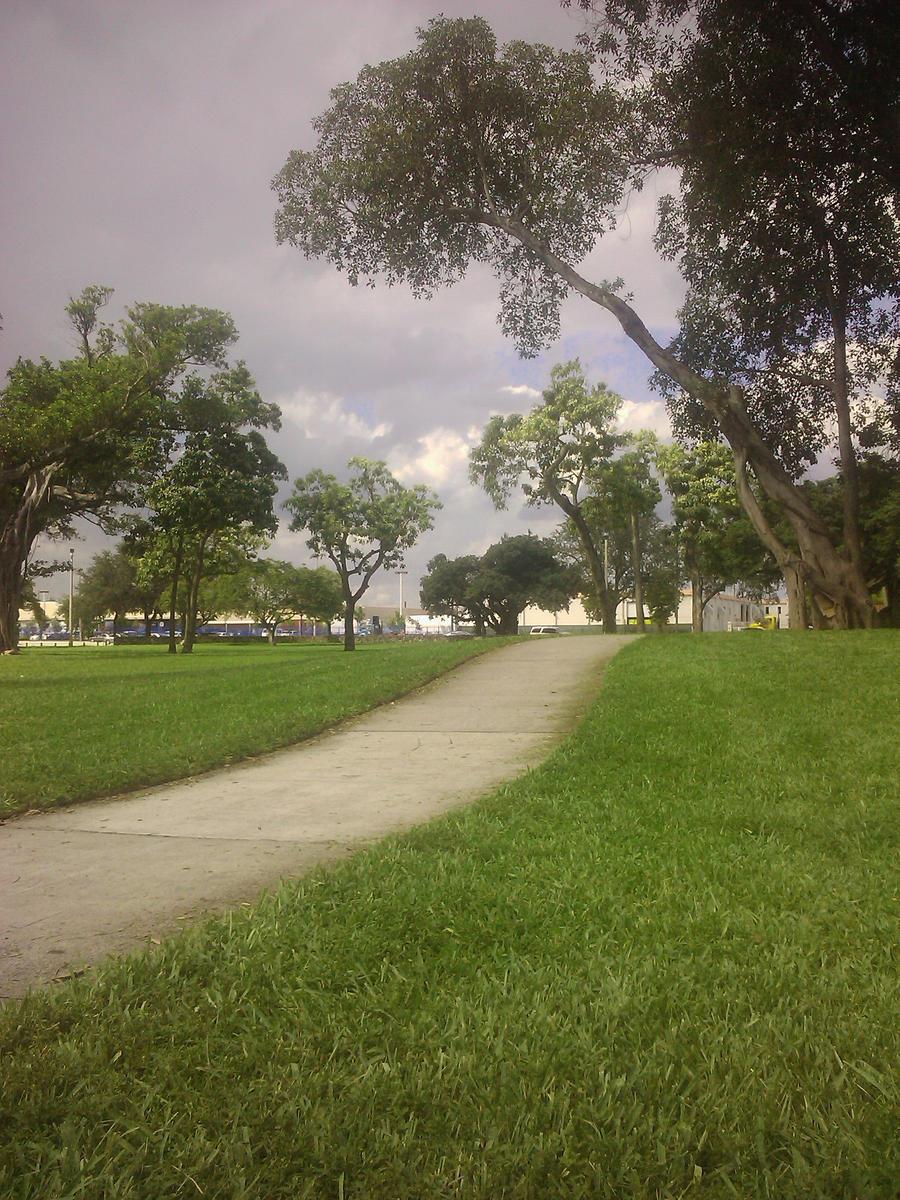 Walkway Through Grass by R3Create