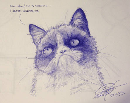 Grumpy Cat Fan Art