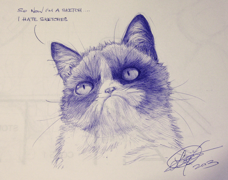Grumpy Cat Fan Art by TixieLix