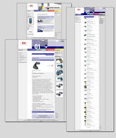 BSI Website by spicone