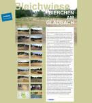 Bleichwiese Microsite by spicone