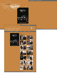 Healey Website by spicone