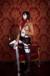 Mikasa by Tovarish-N