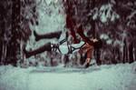 Winter cosplay: Mikasa Ackerman