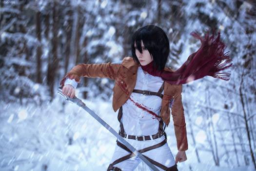 Winter cosplay: Mikasa Ackerman #1