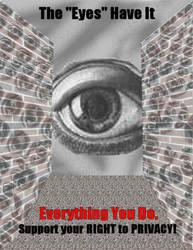 The 'Eyes' have it. by ACitizenoftheWorld