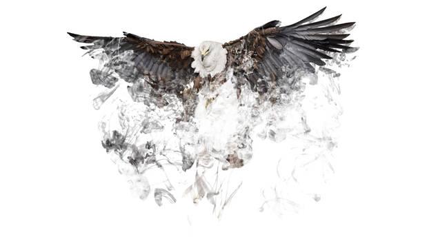Desolving Eagle
