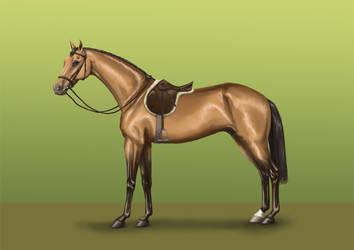 Pur-Sang-Anglais selle / Thoroughbred saddle by Tamara971
