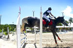 Jumping Competition (Derby) by Tamara971