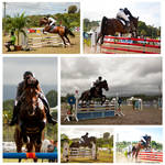 Horse Jumping Competition by Tamara971