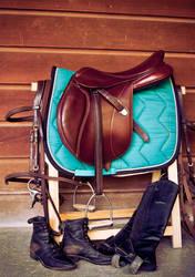 Horse Tack by Tamara971