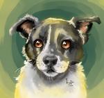 Art of a friend's dog
