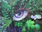 Tropical eye