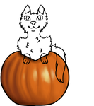 OTA Pumpkin ych 4/5 open