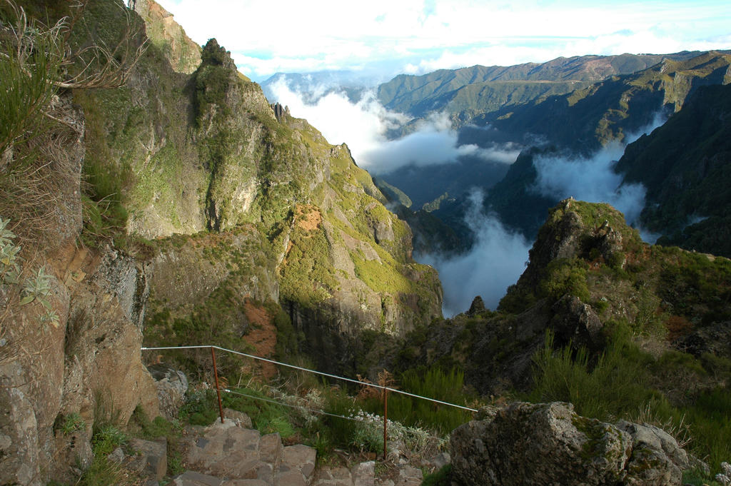 F >> Madeira mountains 1 by kimjorsing on DeviantArt